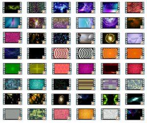 Video Loops