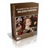 Belgian Painters
