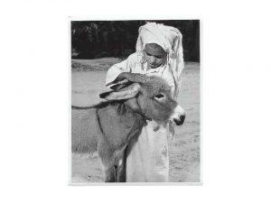 Old Photos of Arabia